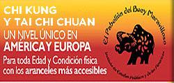 Buey Maravilloso - Profesorado de Chi Kung y Taichi