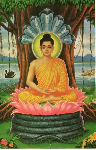 Yoga. Descarga gratuita de libros. 8fc28f7d58a6