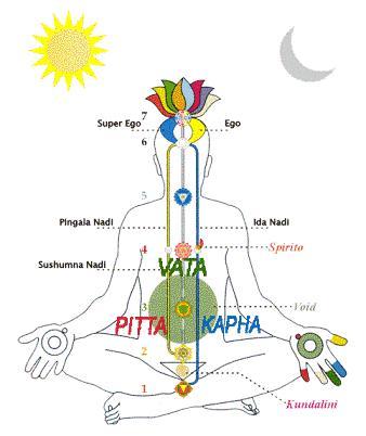 Medicina tradicional: Ayurveda