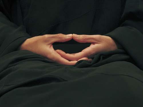 Zen - Budismo - Zazen - Hokkai Join- Mudra de la Meditación - Mudra Cósmico